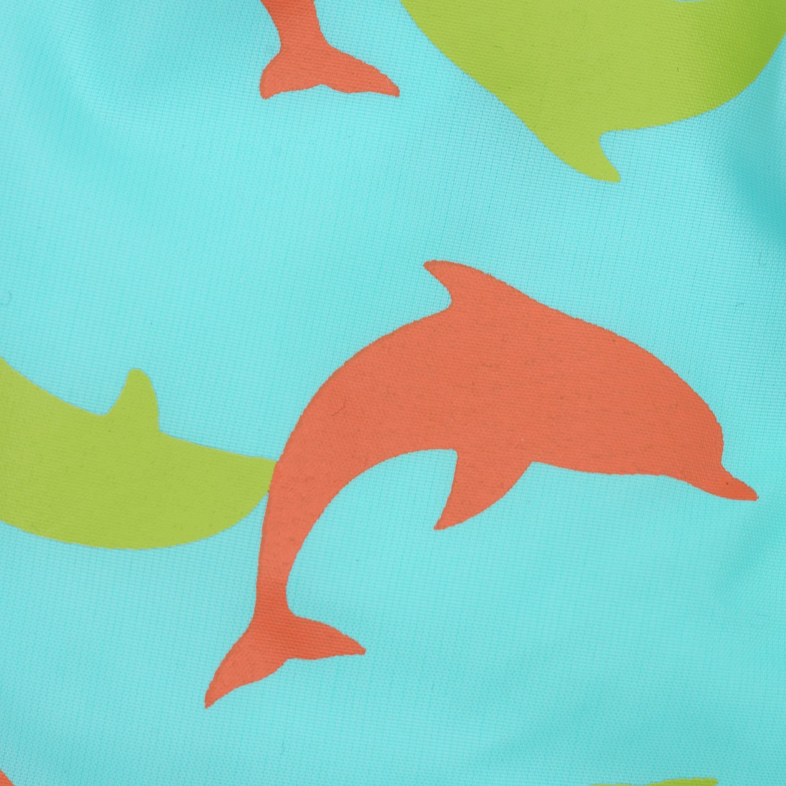 Dolphin Project For Kids - Famous Dolphin 2018