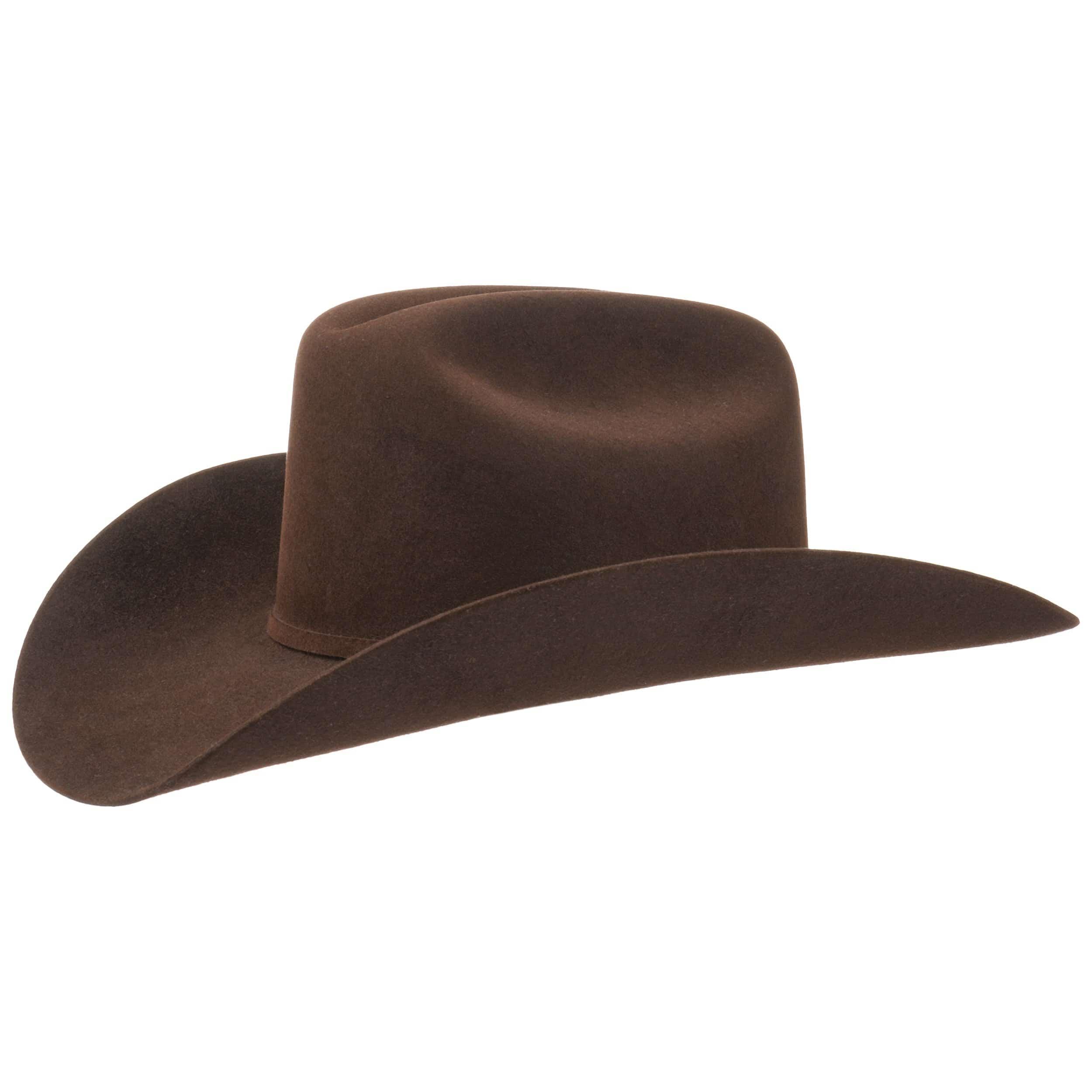 ... Lariat 5X Fur Felt Western Hat by Stetson - dark brown 4 ... 49265ad6be94