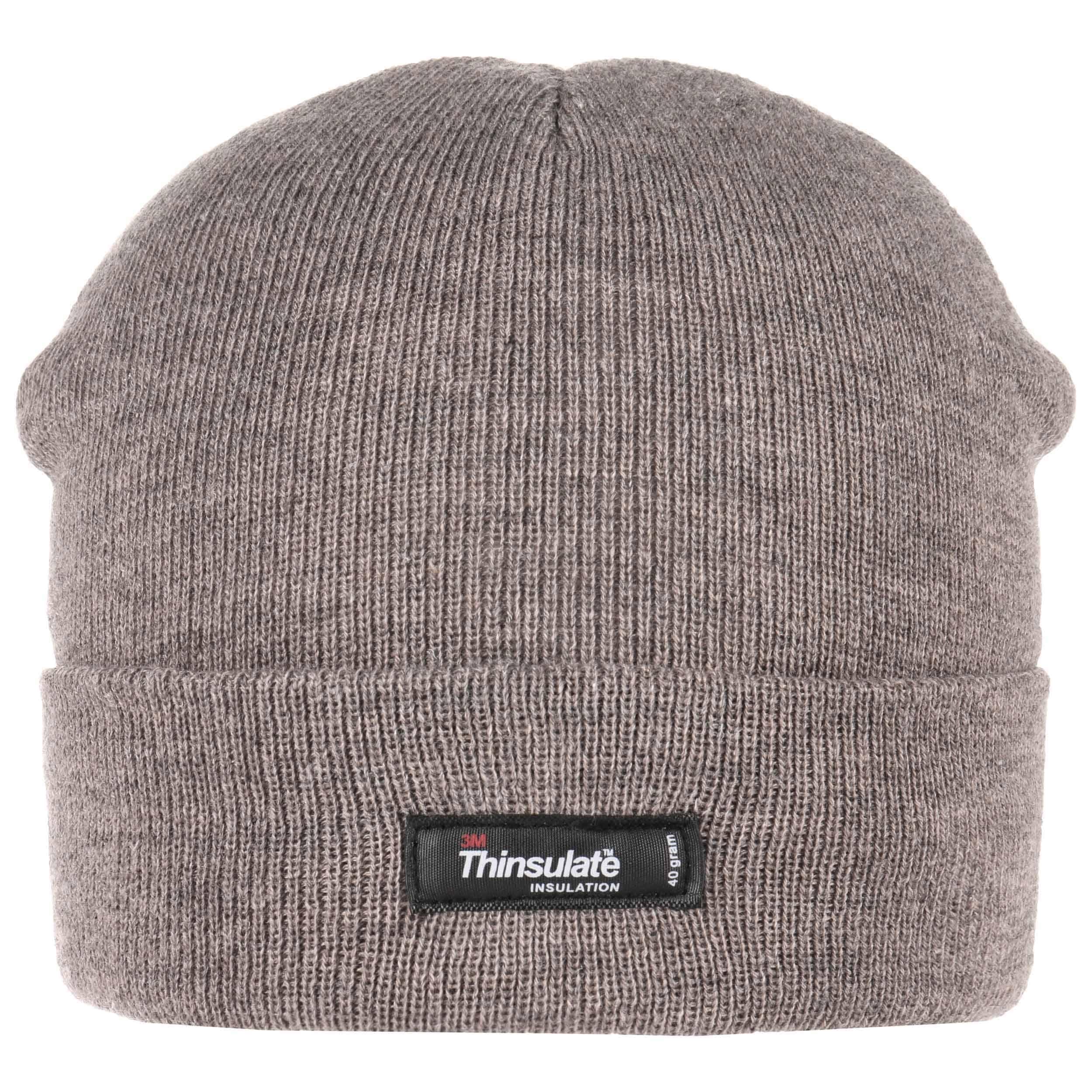 31ae75f64001d ... Thinsulate 3M Beanie Knit Hat with Cuff - beige 3 ...